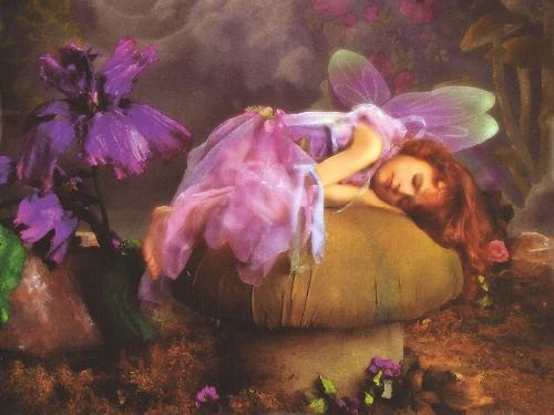 petit ange222 Accueil